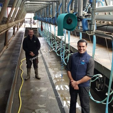 Maximising udder health for improved herd performance through dynamic testing